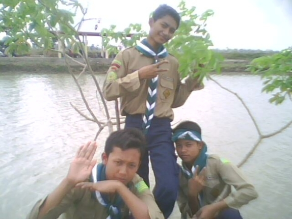 Irmawan,Fajri,and Surya