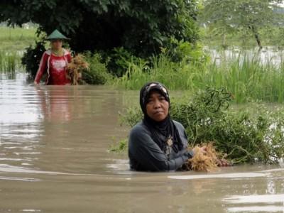 seorang nenek yang lagi latihan renang melewati banjir