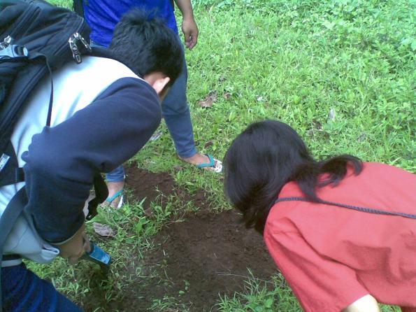 membersihkan titik sampel pengambilan dari rumput liar